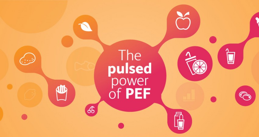 Exploit with Pulsemaster the power of PEF. Pulsed electric field technology can make your business grow