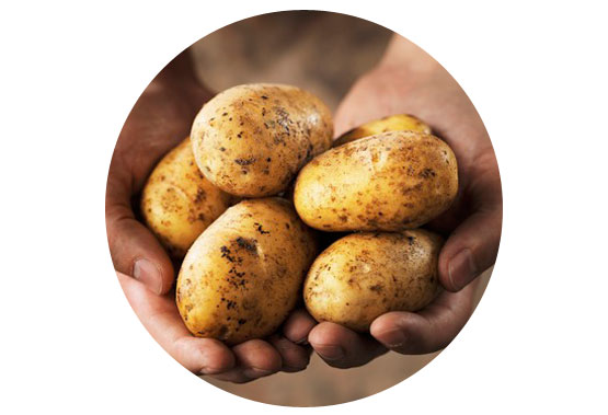 Improve your processes and products, such as potato products, with pulsed electric field technology