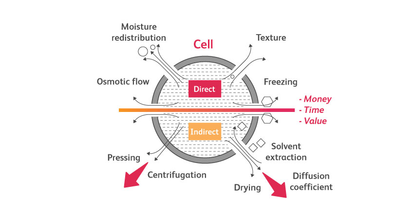 Pulsed Electric Field PEF